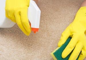 Как почистить ковролин без моющего пылесоса